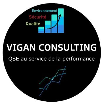 Vigan consulting